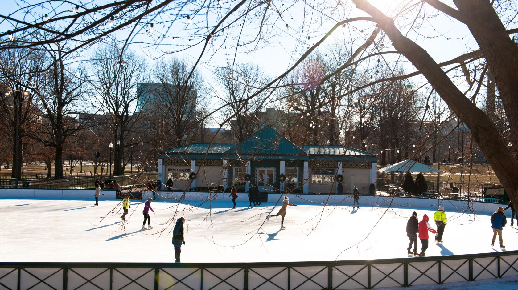 boston winter ice skating at the frog pond near the inn at longwood medical