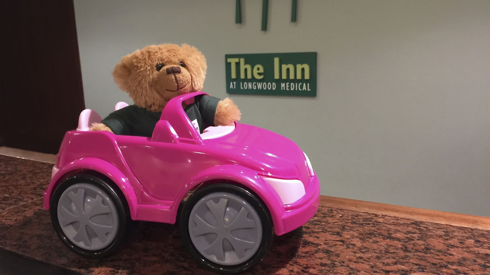 hope the teddy bear in a toy car on the front desk